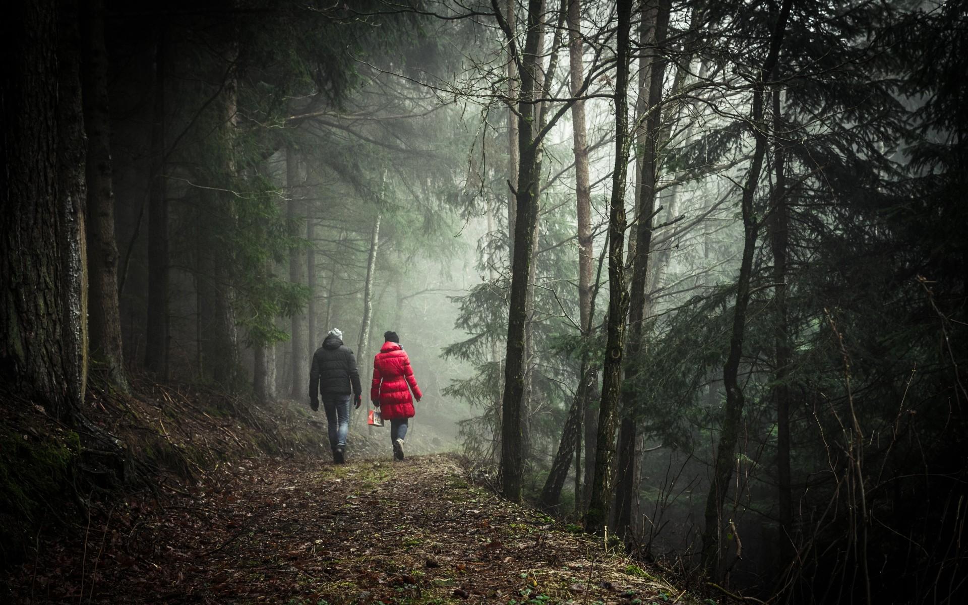 Haalbaarheidsonderzoek wandelorganisatie